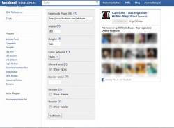 Facebook like box für Nachrichtenseiten
